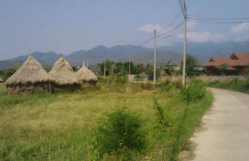 volunteer exchange abroad