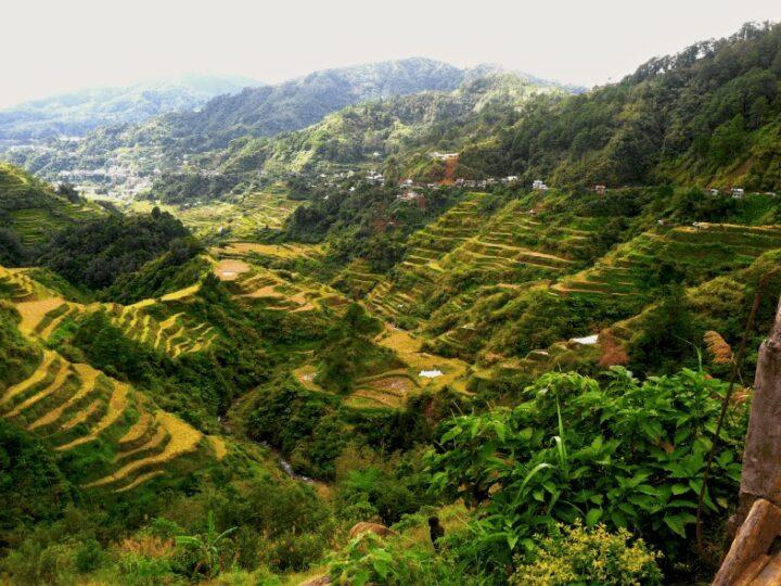 Exploring the Rice Terraces of Banaue and Batad