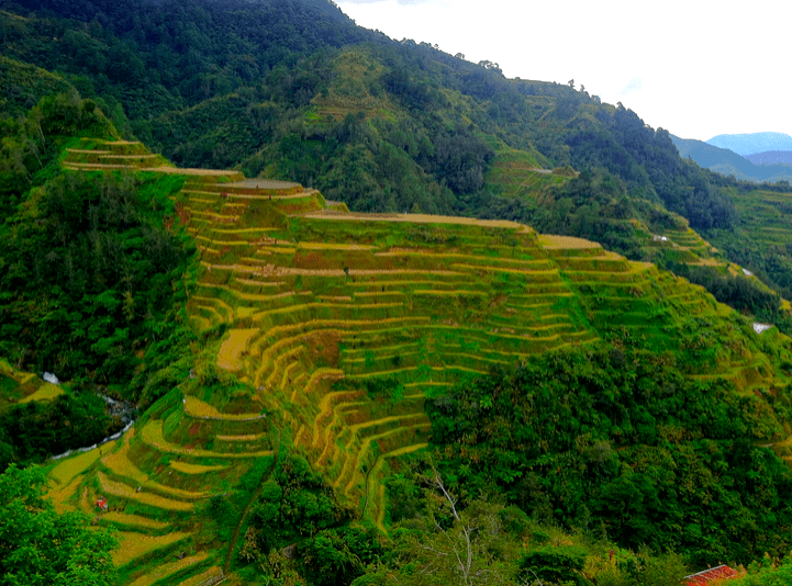 rice terraces banaue philippines two-week itinerary for the Philippines