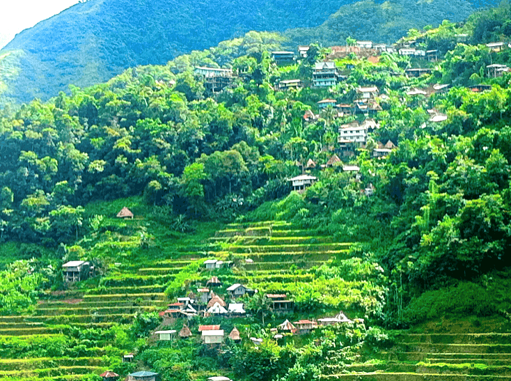 rice terraces batad philippines two-week itinerary for the Philippines