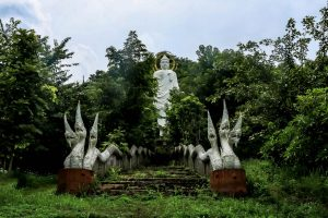 Include Doi in Cee in your chiang rai itinerary