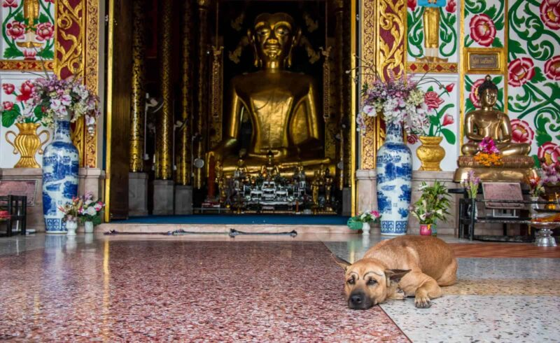 A Chiang Rai itinerary for two days.