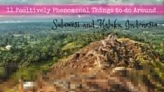 things to do around sulawesi