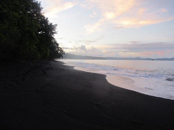 Tangkoko Beach, Sulawesi