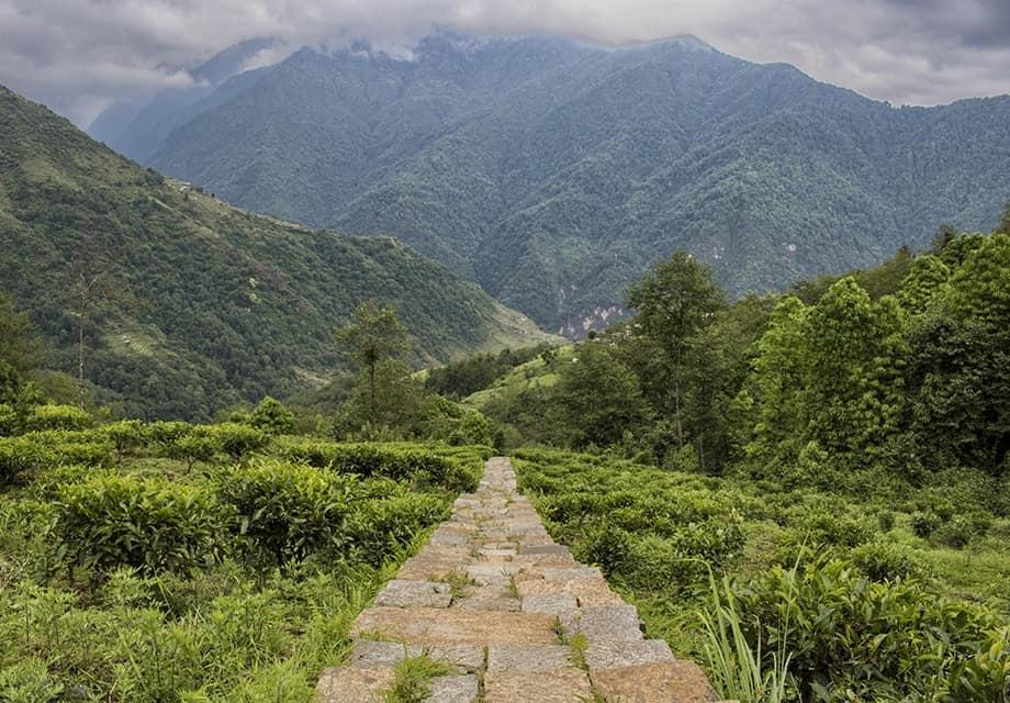Trekking in Nepal, Poon Hill Trek, Nepal trekking, Annapurna circuit,annapurna trek,nepal tour995436