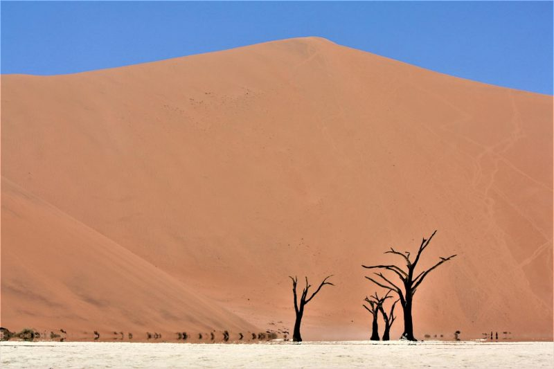 Visiting Deadvlei on a self-drive Namibia trip