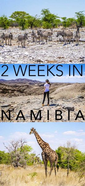 Self drive with this namibia itinerary