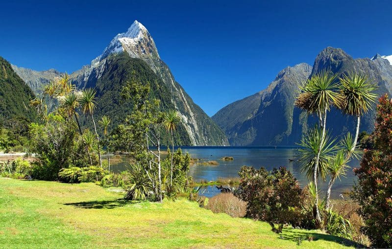 Spend a day at leisure in Milford Sound during your 5 days in Queenstown