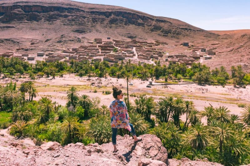 Things to do in Ouarzazate: Go to an oasis!
