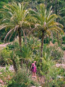 Drink OJ and swim amongst the palm trees at Paradise Valley, Morocco.