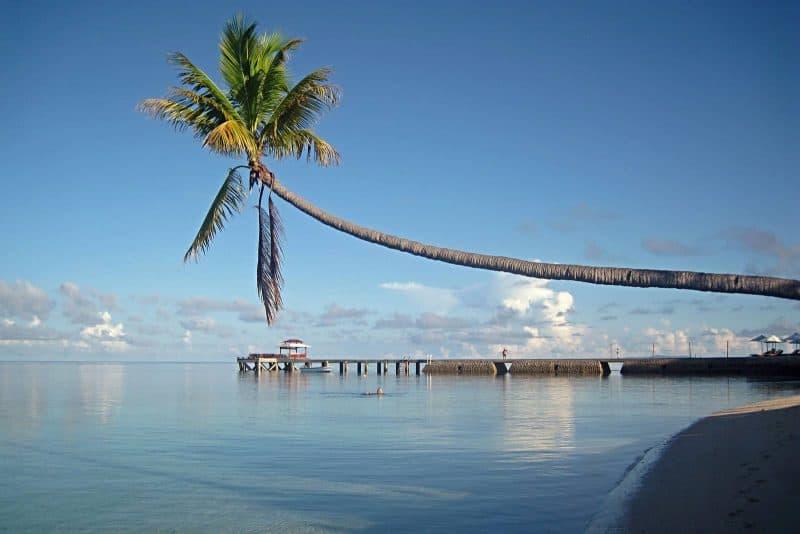beach Wakatobi Sulawesi Indonesia