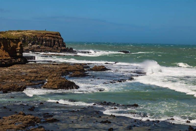 Curios Bay