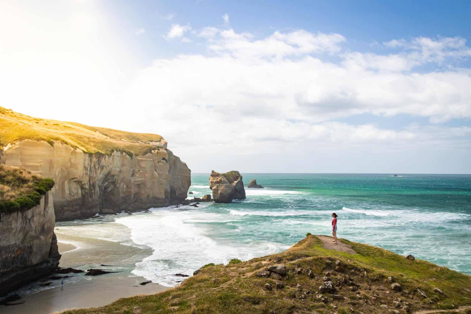 4 Easy But Beautiful Walks Around Dunedin, New Zealand