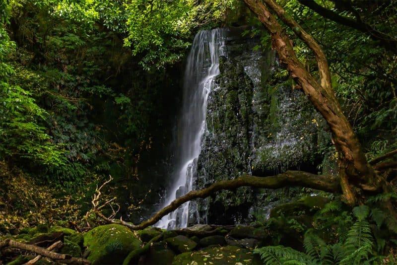 Matai waterfall