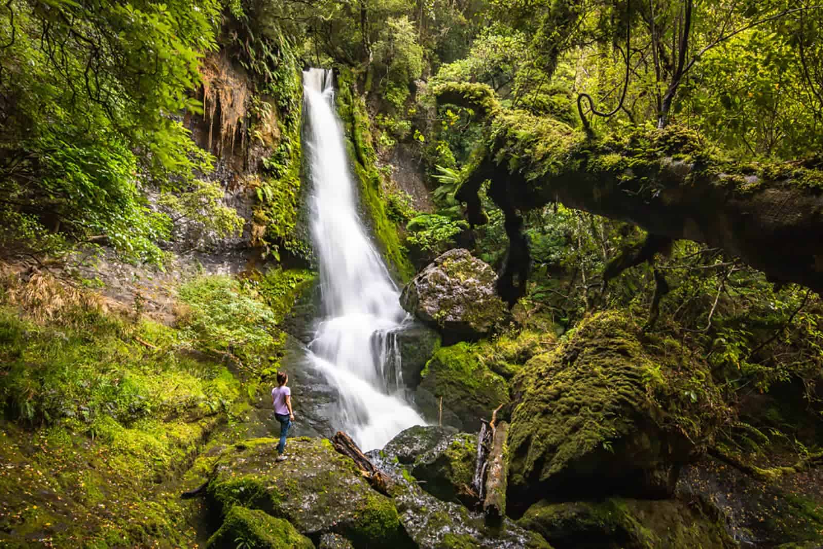 things to do Catlins Waterfall