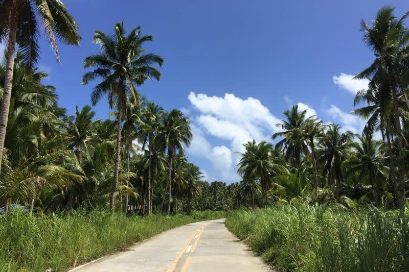 On the road to Magpupungko