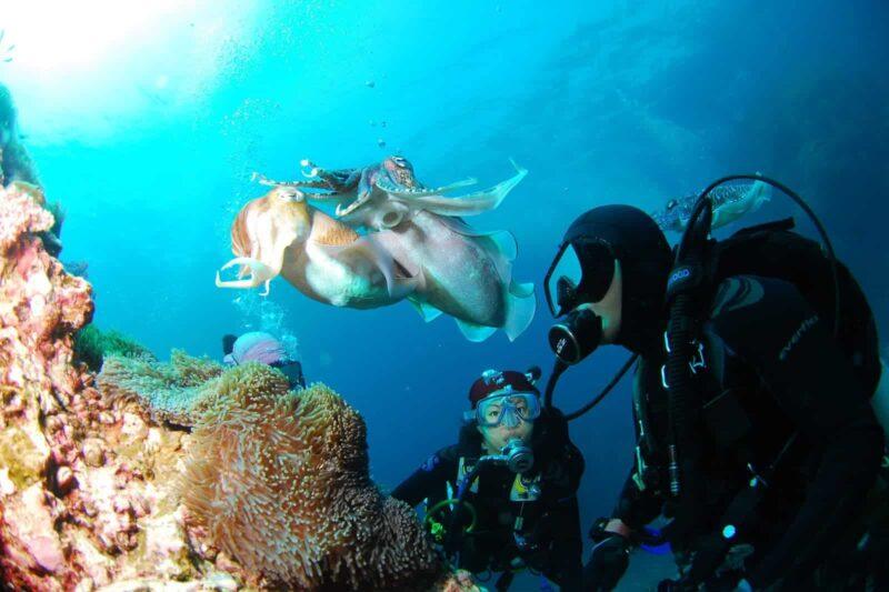 Scuba diving instructor