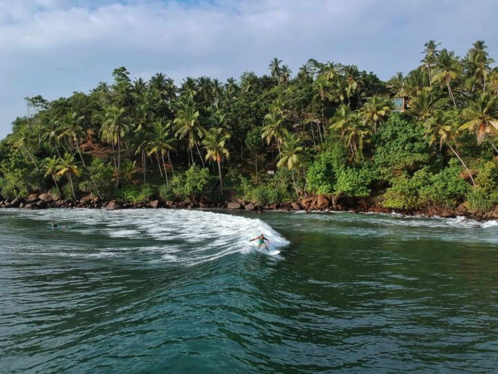 Things to do in Mirissa
