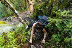 French ridge hut forest climb