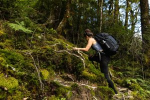 French ridge hut hard climb