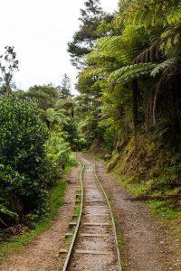Karangahake Gorge train tracks