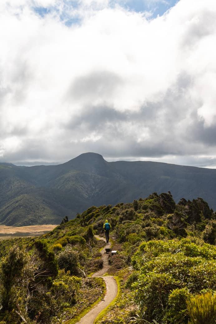 Pouakai circuit hike trail