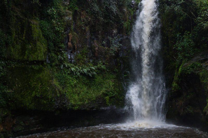 Rotorua Kaiate Falls walk