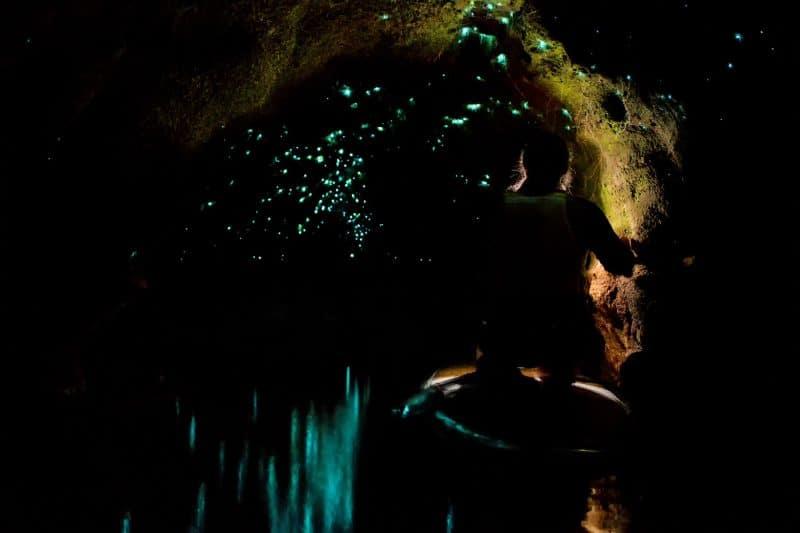 Rotorua Sup Glowworm