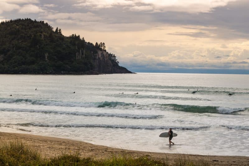 The Coromandel Surfer