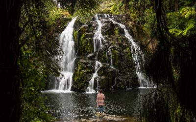 11 Fab Things to Do in The Coromandel, New Zealand