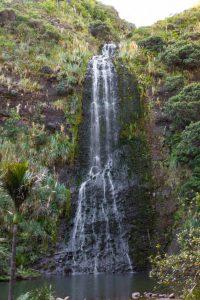 Waitakere ranges Karekare falls trail