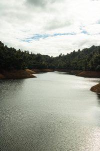 Waitakere ranges Nihotupu dam