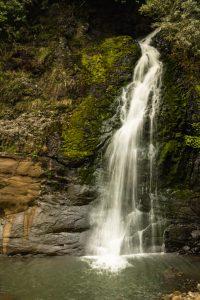 Waitakere ranges Nihotupu trail
