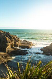 Waitakere ranges Tasman lookout trail
