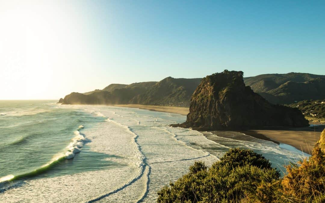 Piha & Waitakere Ranges Walks, Waterfalls, and Beaches—New Zealand