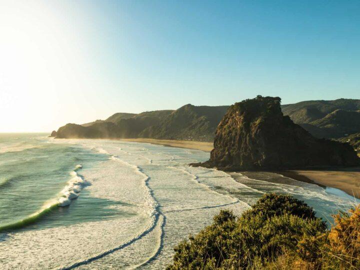 Piha & Waitakere Ranges Walks, Waterfalls, and Beaches—New Zealand