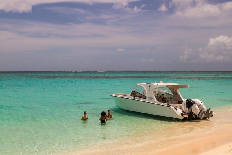Boat prickly pear Anguilla