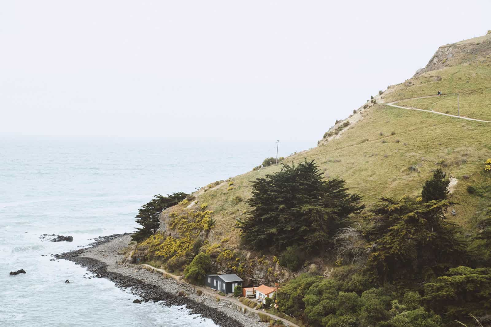 Godley Head Hike