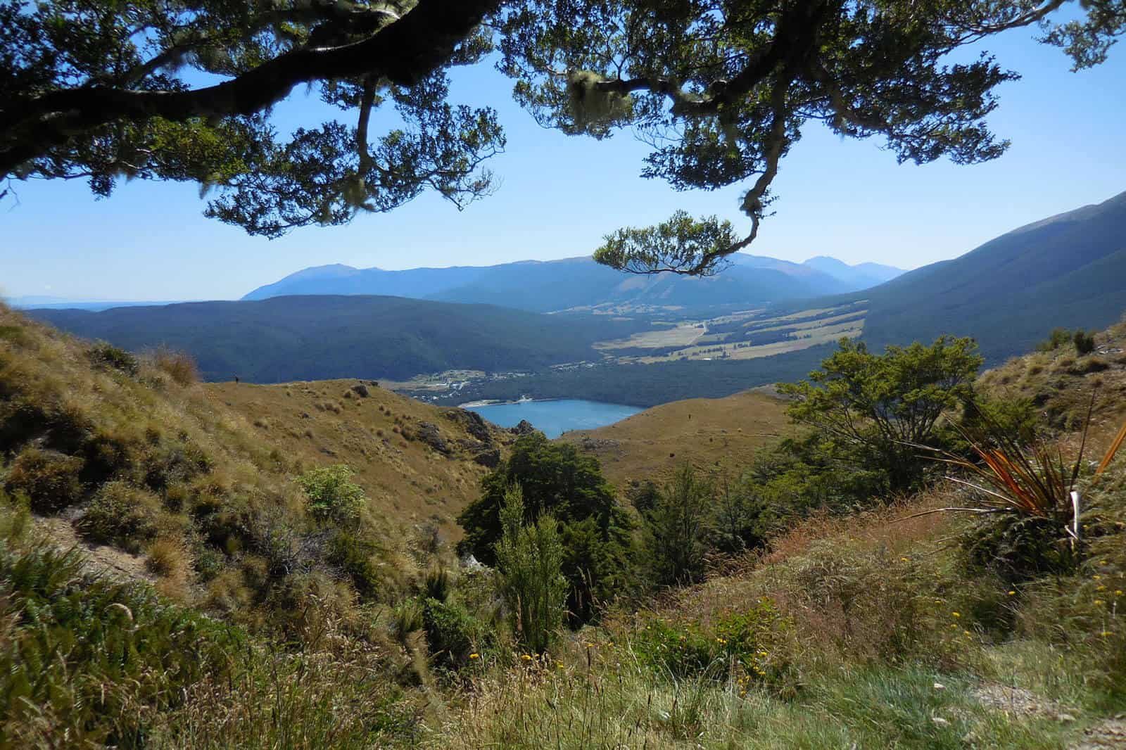 Mount Robert circuit view