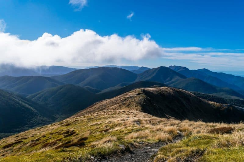 Mt Arthur walking along the ridge down from summit