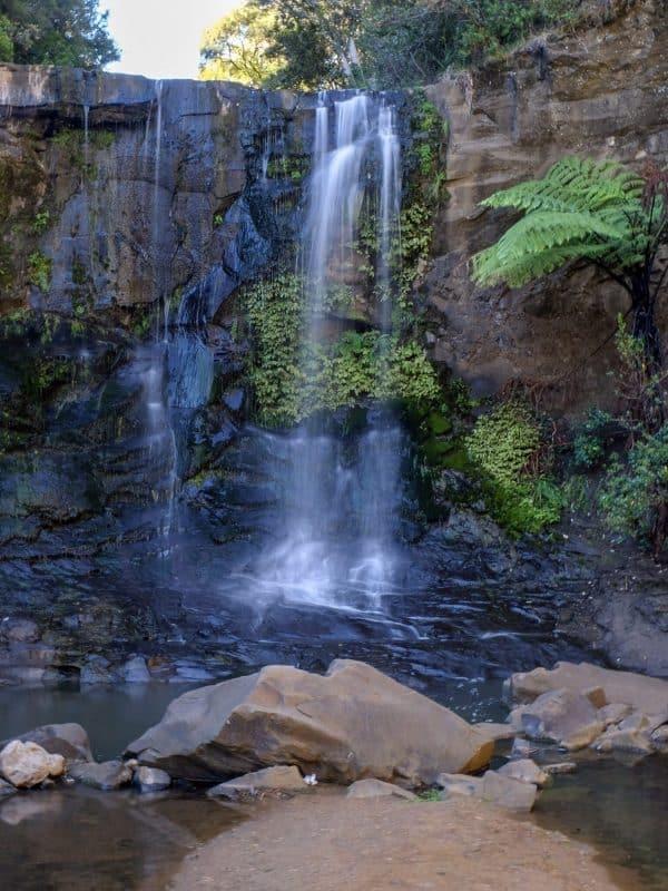 Goldie Bush walkway waterfall
