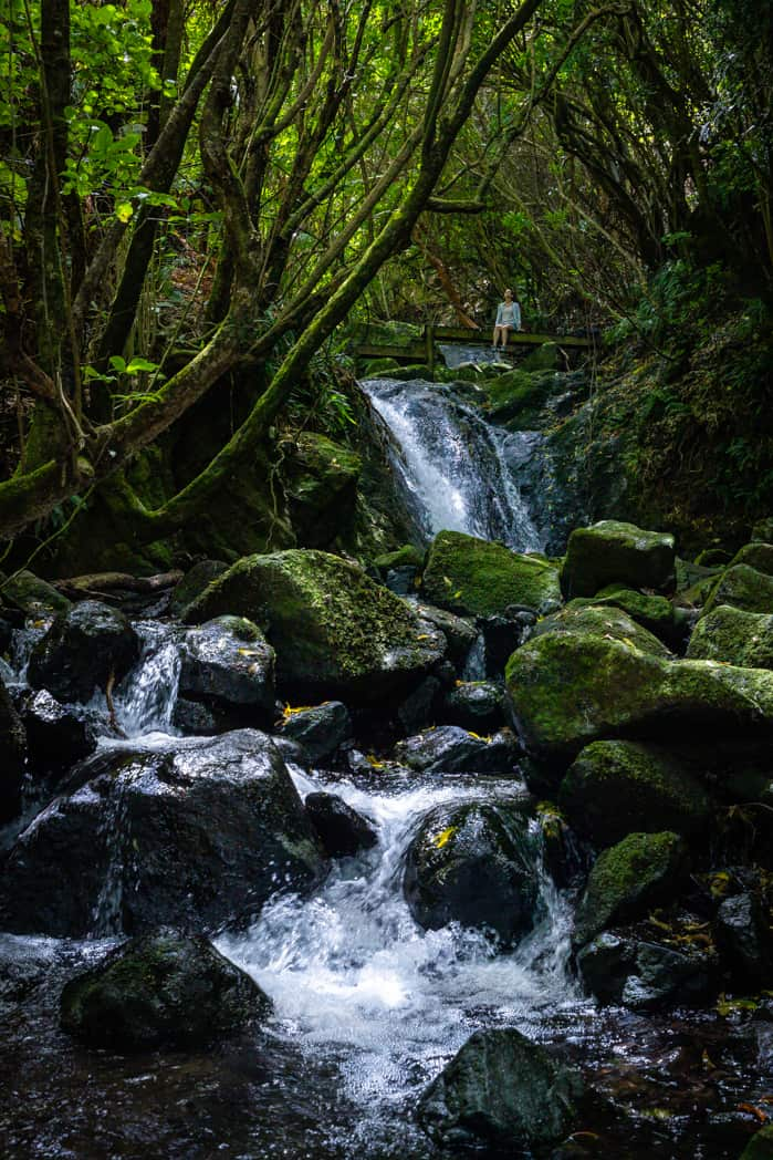 Hinewai Waterfall loop