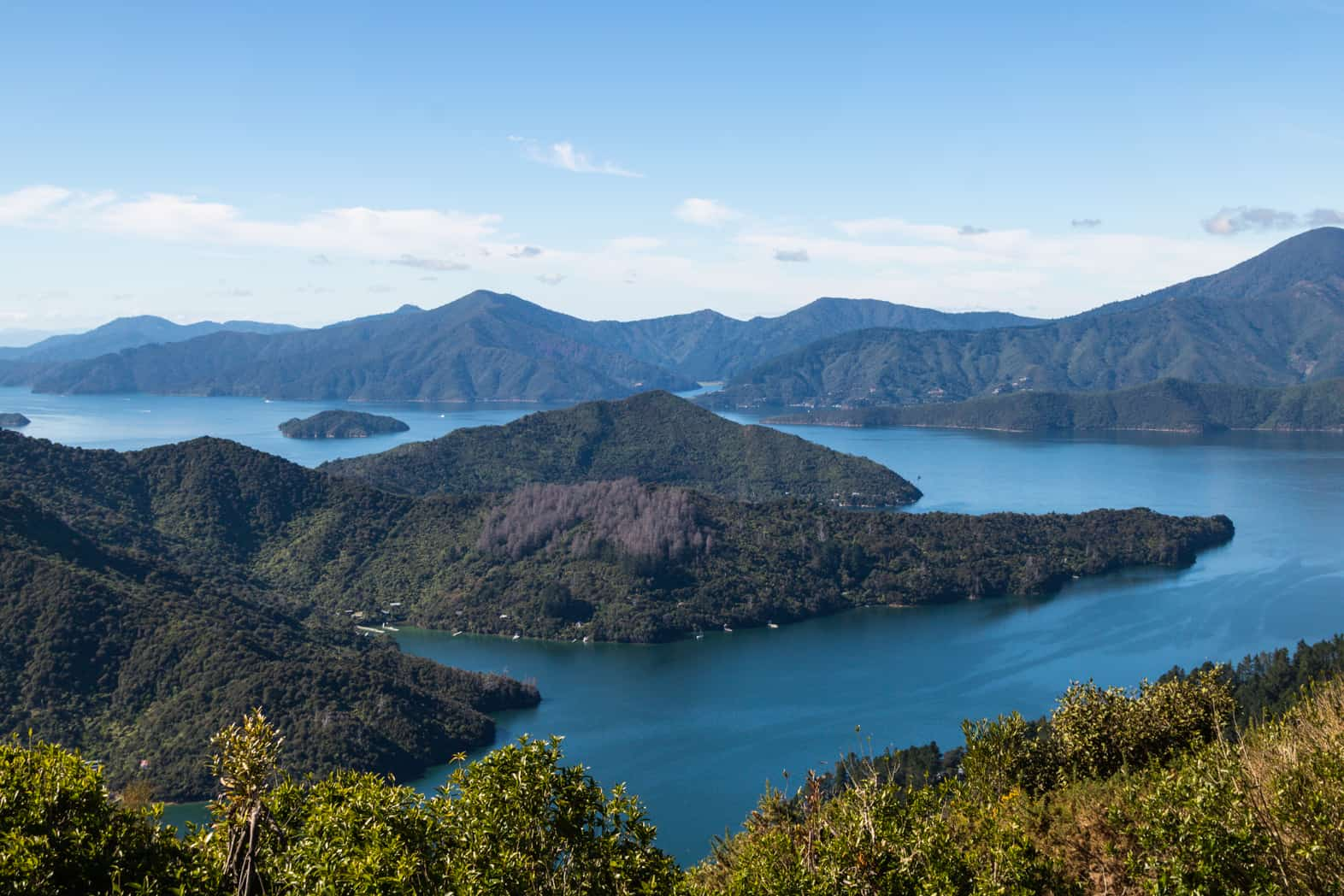 Queen Charlotte Track is another fun place to visit in South Island.