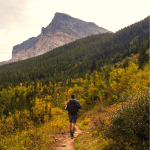 Glacier National Park Hiking Guide