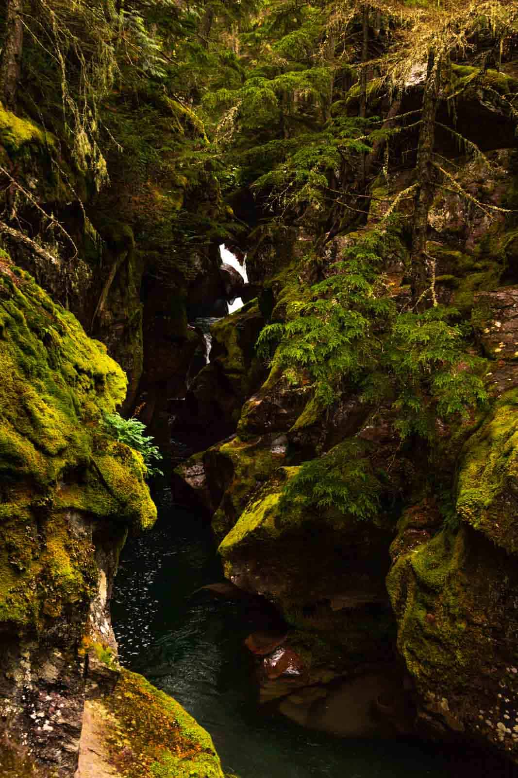 Avalanche Gorge and waterfalls on the way to best hikes in Glacier National Park