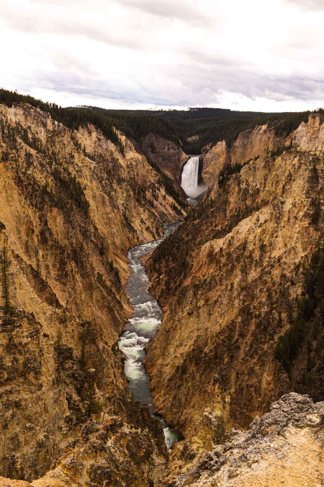 A view of Artist Lookout which is a must for any Yellowstone Itinerary