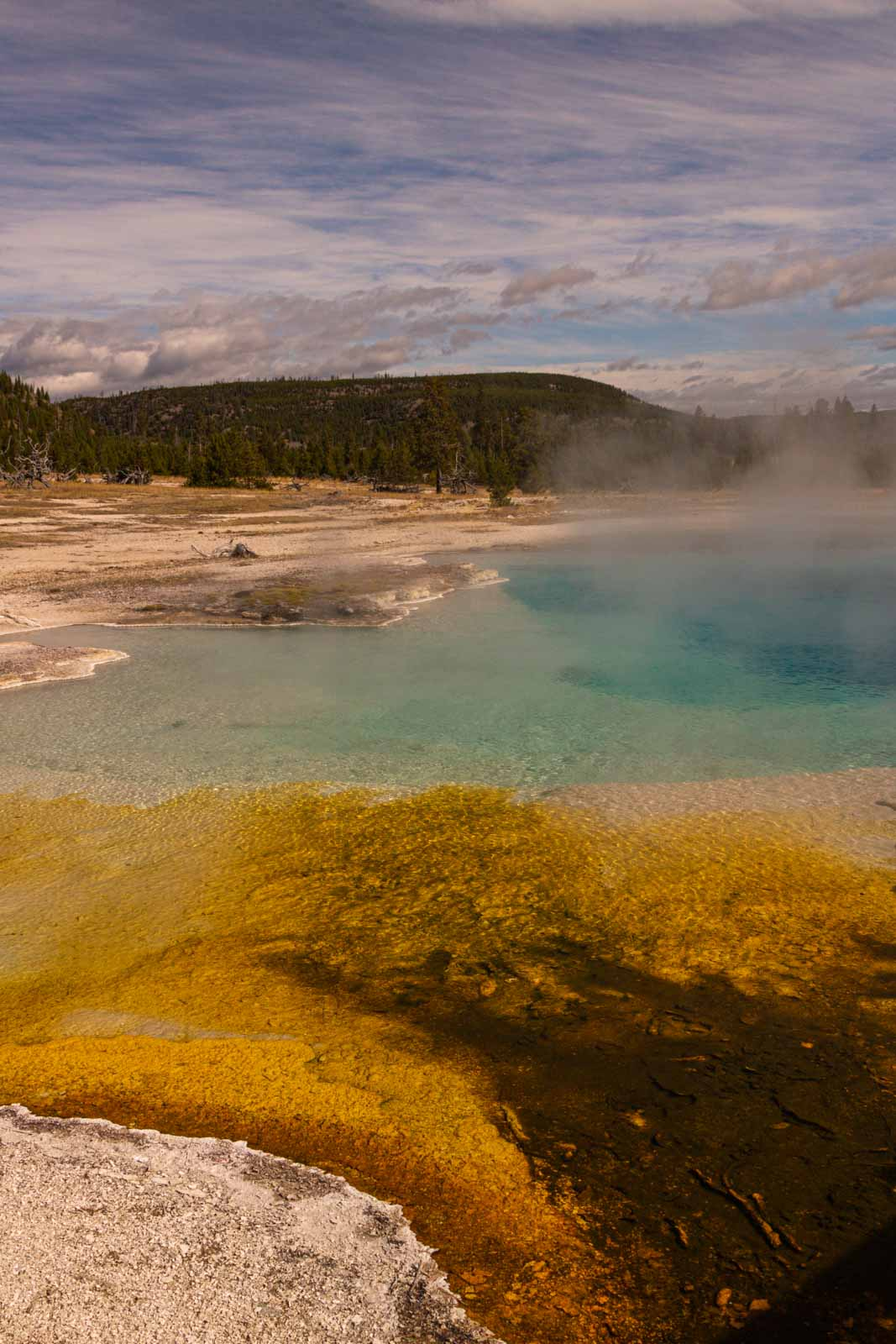 A view of Biscuit Basin that shouldn't be skipped on your Yellowstone Itinerary