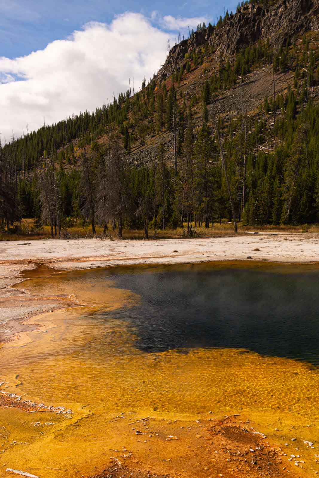 A view of Black Sand Basin - one of the many things to do in Yellowstone