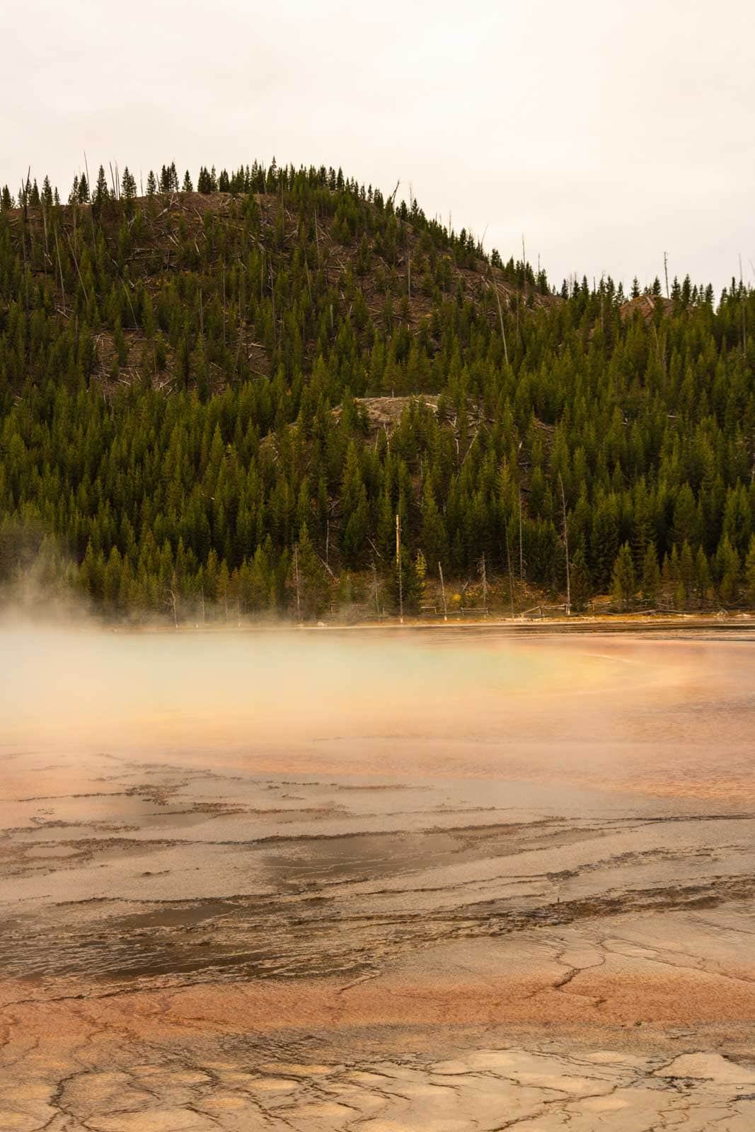 A view of Grand Prismatic from below is a must see on your Yellowstone itinerary