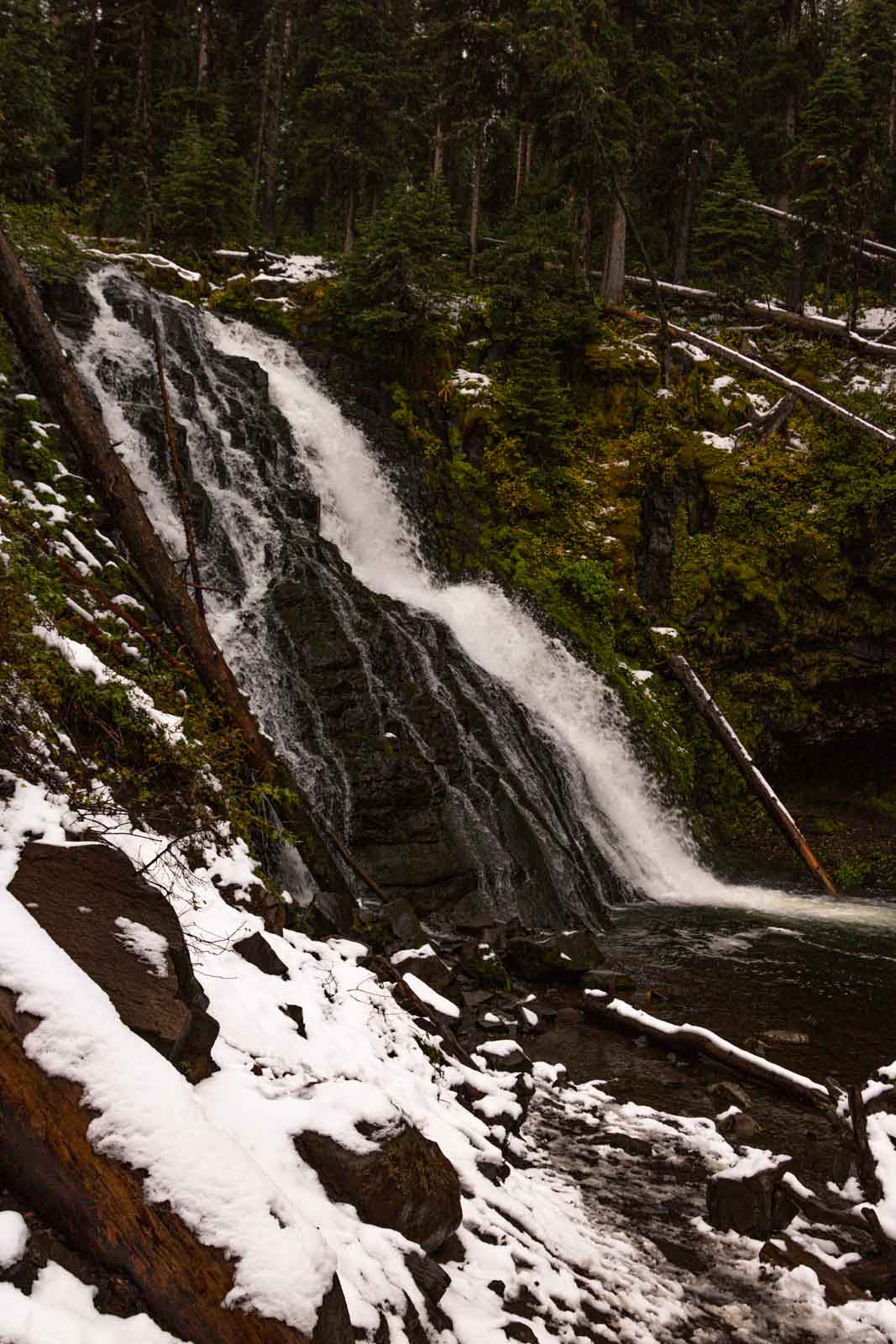 A view of a trail in Grotto Falls in Montana which is a must for any Yellowstone Itinerary